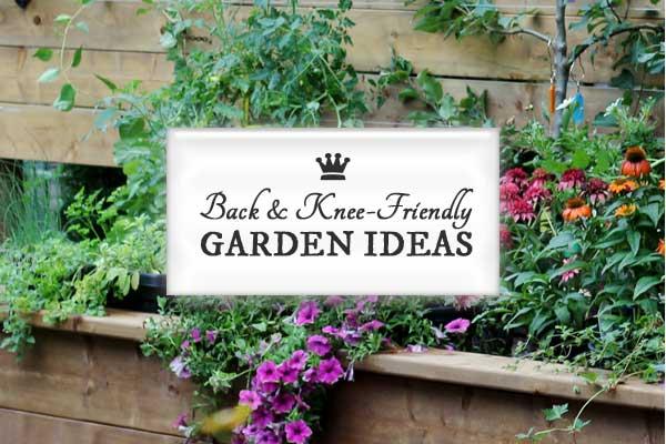Back & Knee-Friendly Garden Ideas