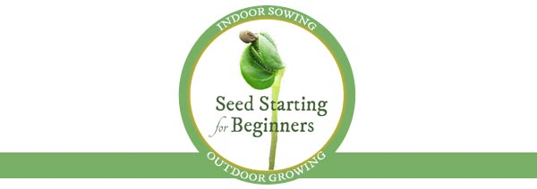 Seed Starting for Beginners | Indoor Sowing Outdoor Growing