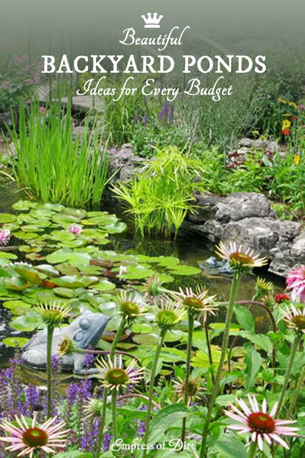 Small Garden Pond Ideas old well converted into small garden pond 17 Backyard Garden Pond Ideas All Sizes And Budgets