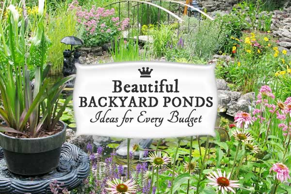 17+ Backyard garden pond ideas - all sizes and budgets