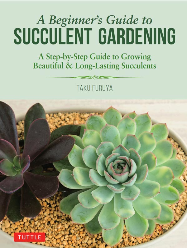 A Beginner's Guide to Succulent Gardening by Taku Furuya.