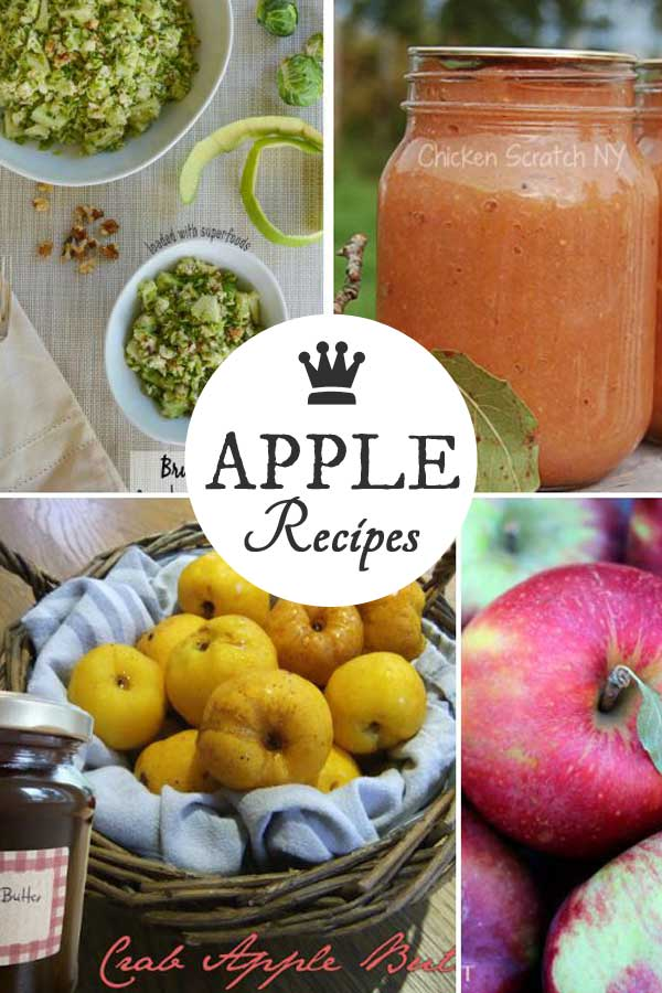 Best apple recipes for fall including apple pies, cakes, sauce, crumbles, crisps, salad, jam, and cocktail curated by empressofdirt.net