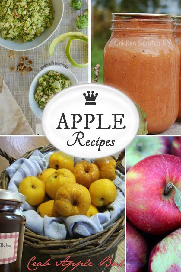 Best apple recipes for fall including apple pies, cakes, sauce, crumbles, crisps, salad, jam, and cocktail