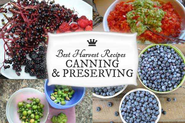 Best Recipes for Canning & Preserving