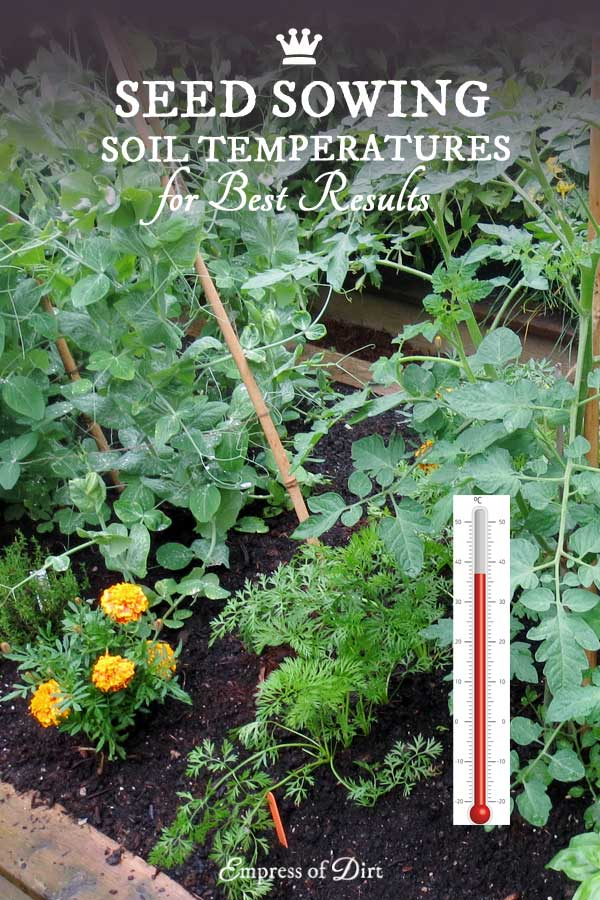 Did you know if you sow seeds at certain soil temperatures you will get the best germination rates? Every plant species has its own sweet spot, and the more we accommodate this, the better the results.