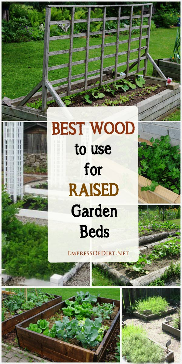 How to choose the best wood for raised garden beds.