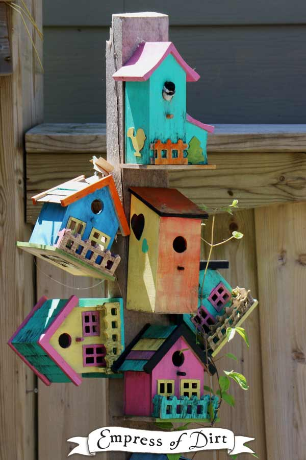 Colourful birdhouses with a chickadee peaking out. Can you see her?