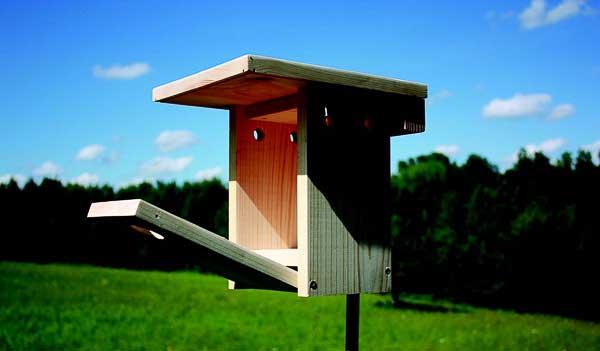 Bluebird nesting box.