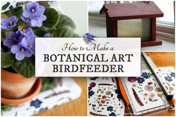 How to Make a Botanical Art Birdfeeder