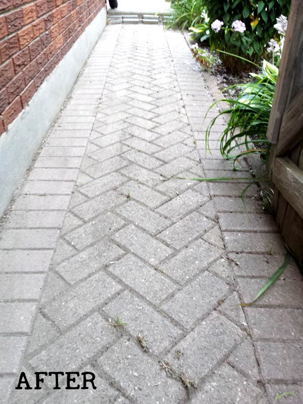 How to remove weeds from brick path without herbicides.
