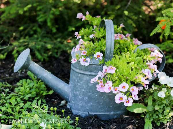 Add colorful flowers to your shade garden.