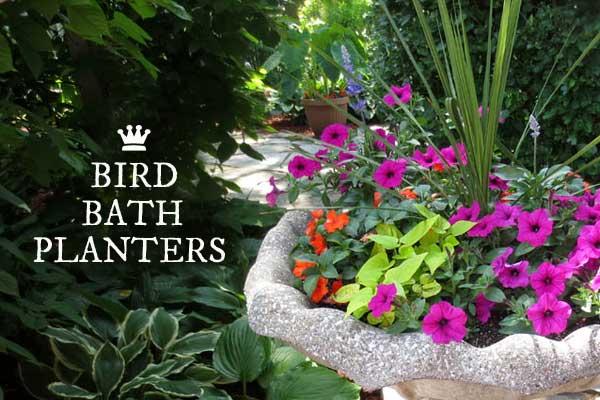 Turn bird baths into flower planters