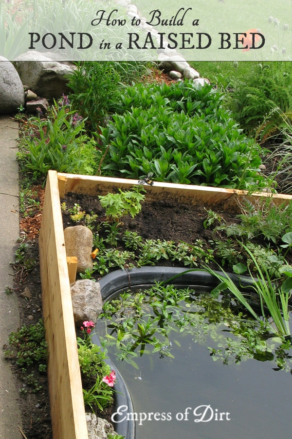 Diy build a garden pond in a raised bed empress of dirt for Raised garden pond designs