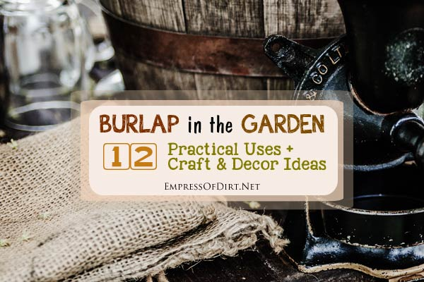 There are good reasons burlap (also known as hessian or jute) is so popular in the garden. It's inexpensive, biodegradable, solves a variety of plant problems, and the natural texture of the jute fibers is undeniably gorgeous. Come see all of the practical uses plus lots of outdoor craft and décor ideas.