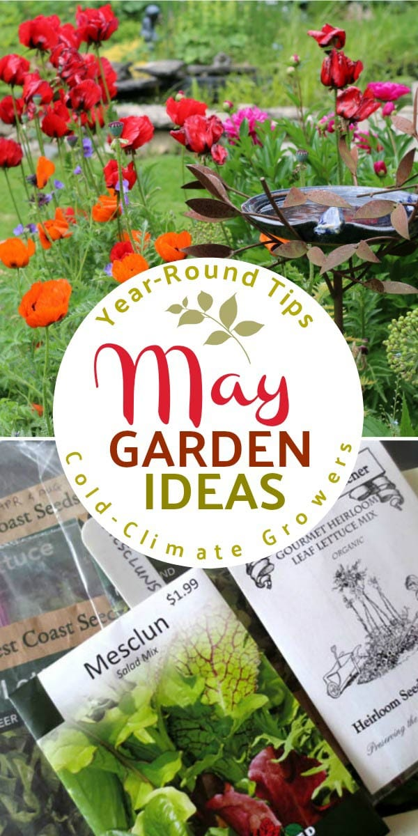 May garden tasks with Empress of Dirt. See what you can make and grow.