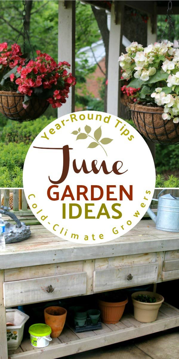 June garden tasks with Empress of Dirt. See what you can make and grow.