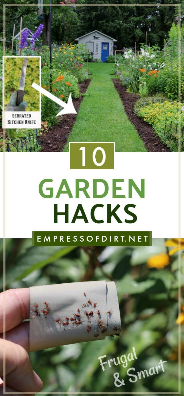 10 Smart & Frugal Garden Hacks