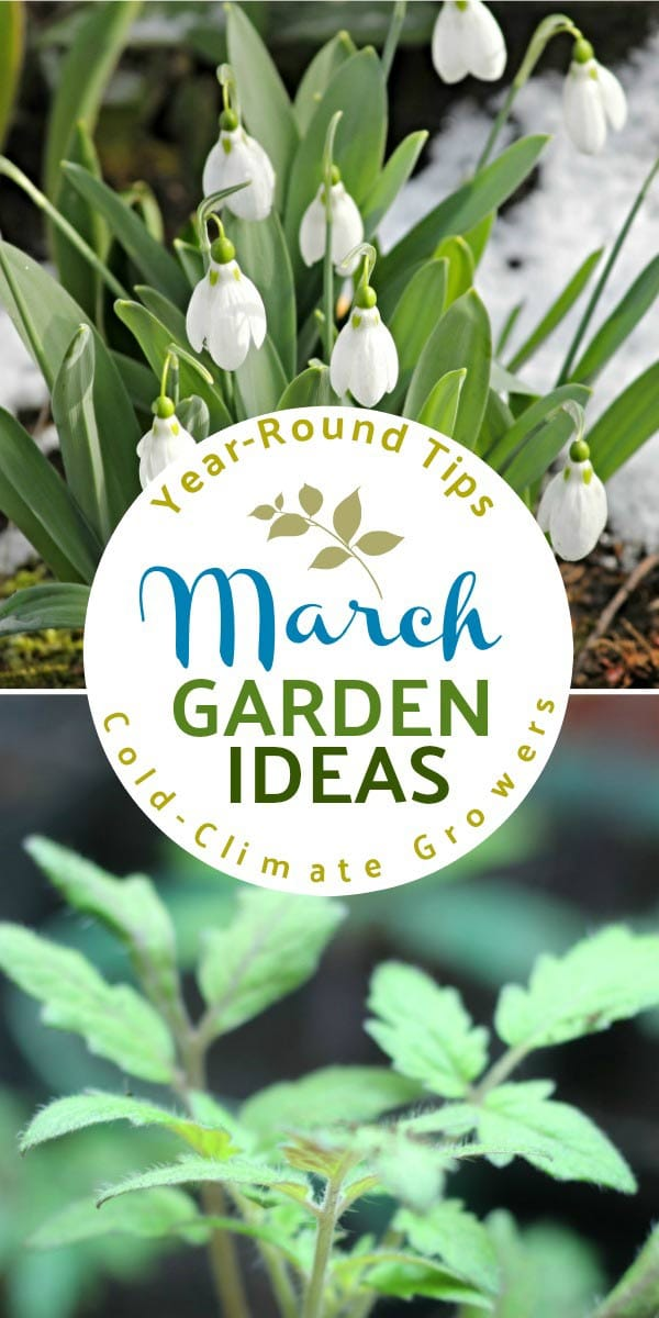 March garden tasks by Empress of Dirt. Grab ideas to grow and make every month of the year.