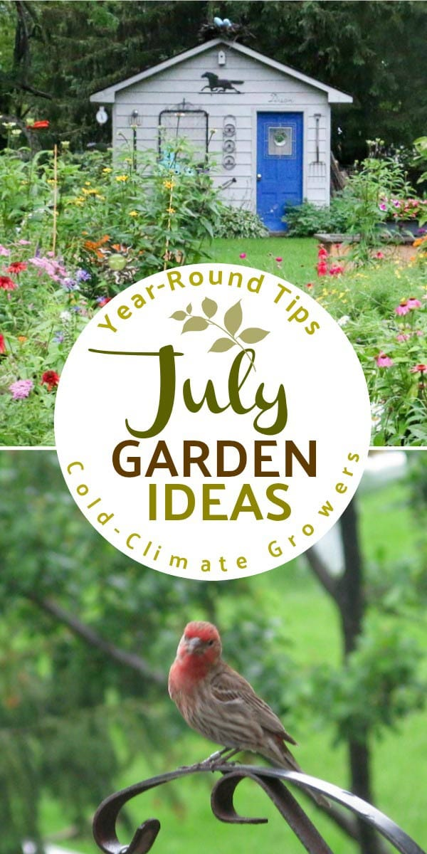 July garden tasks with Empress of Dirt. See what you can make and grow.