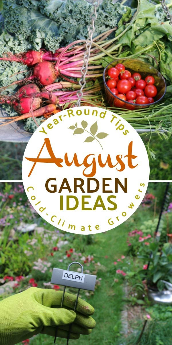 August garden tasks with Empress of Dirt. See what you can make and grow.
