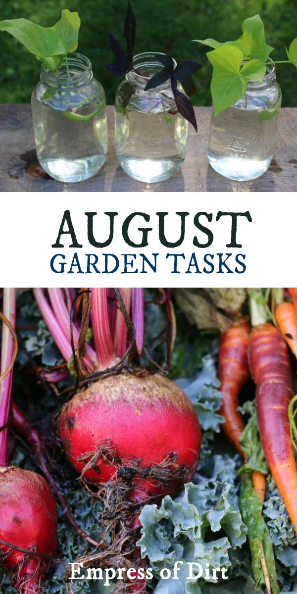 Creative ideas for gardeners during the month of August.