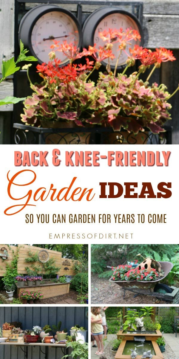 Many gardeners mention that, as they get older, back and knee problems hold them back from spending more time in the garden. Have a look at these easier-to-reach solutions in case any of them will work for you.