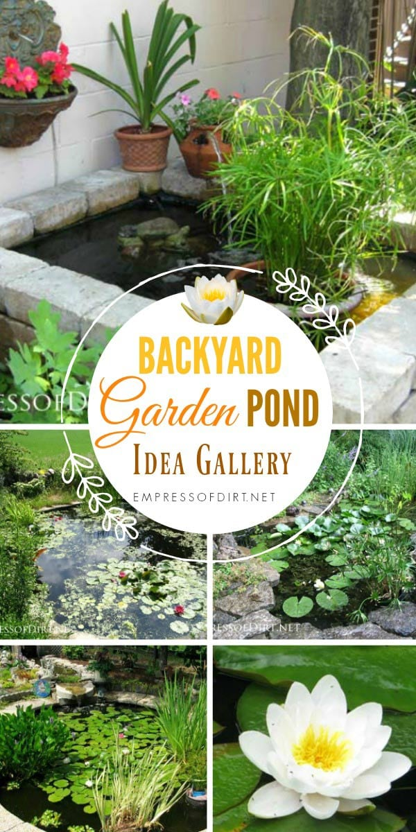 17+ Backyard garden pond ideas - all sizes and budgets.