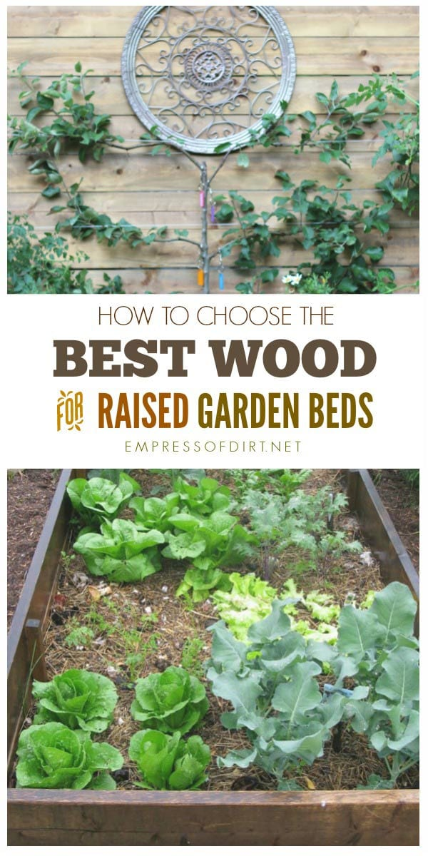 building garden beds. best wood for raised garden beds building