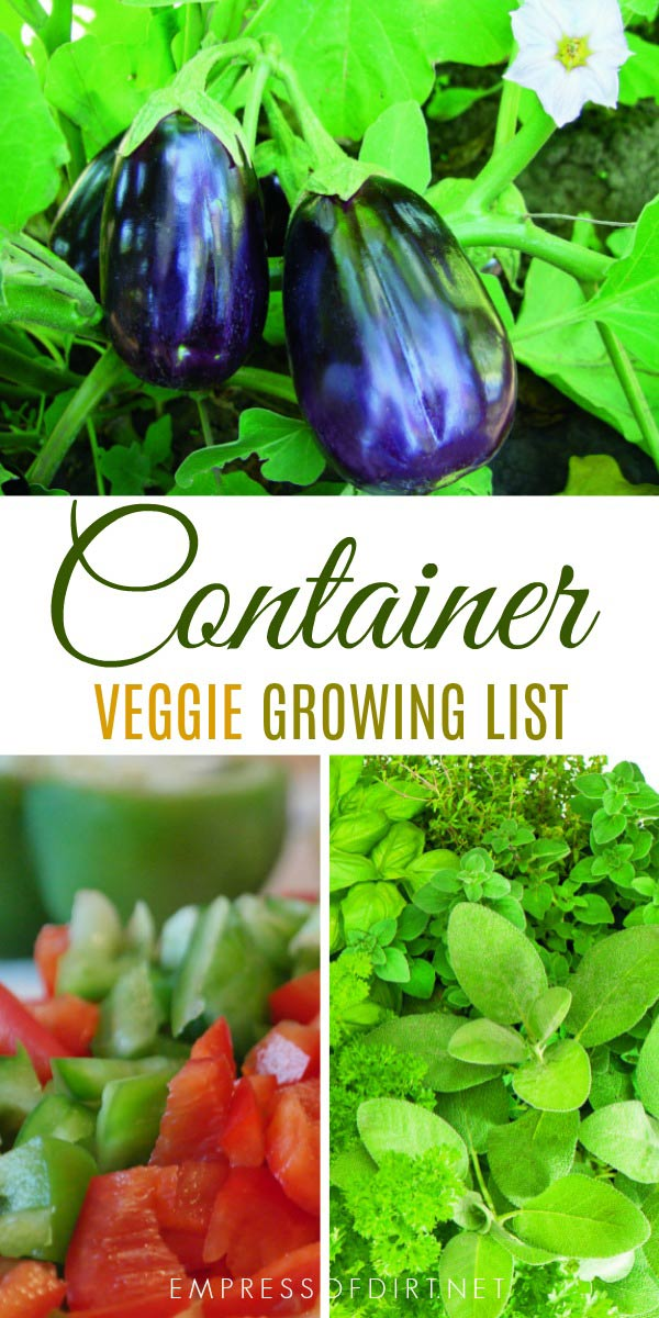 10 Best vegetables for containers: Containers can be an incredibly efficient way to grow edibles, whether you're using them to supplement a larger backyard garden or as a standalone garden.