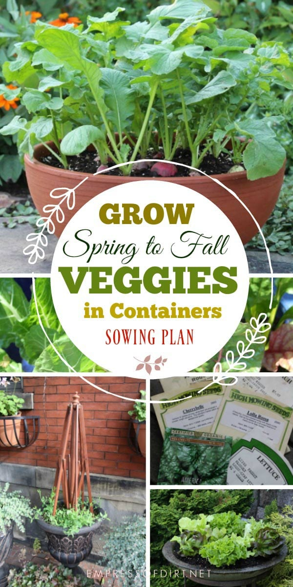 How to grow a continous harvest of veggies in containers from spring to fall by Jessica Walliser, author of Container Gardeing Complete.