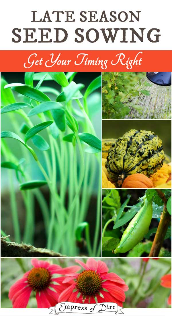 When is it too late to plant seeds outdoors? Get your timing right for mature plants before winter sets in.