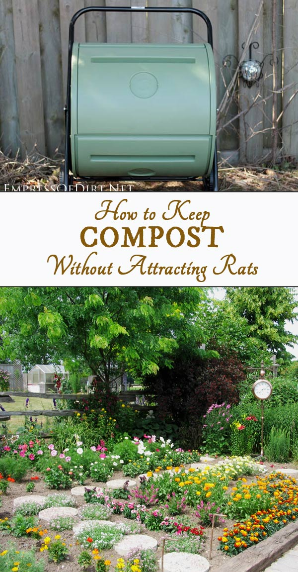 Easy Composting Without Pests (Sorry, Rats!)
