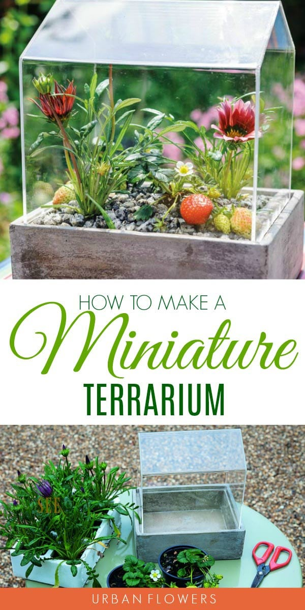 Make a miniature terrarium from the book Urban Flowers: Creating Abundance in a Small City Garden by Carolyn Dunster | Photographs by Jason Ingram
