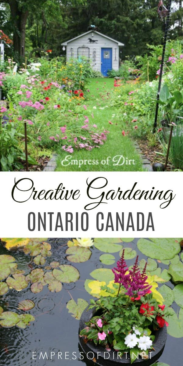 Life as a gardener in Ontario, Canada growing flowering perennials, fruit trees, veggies, and more.