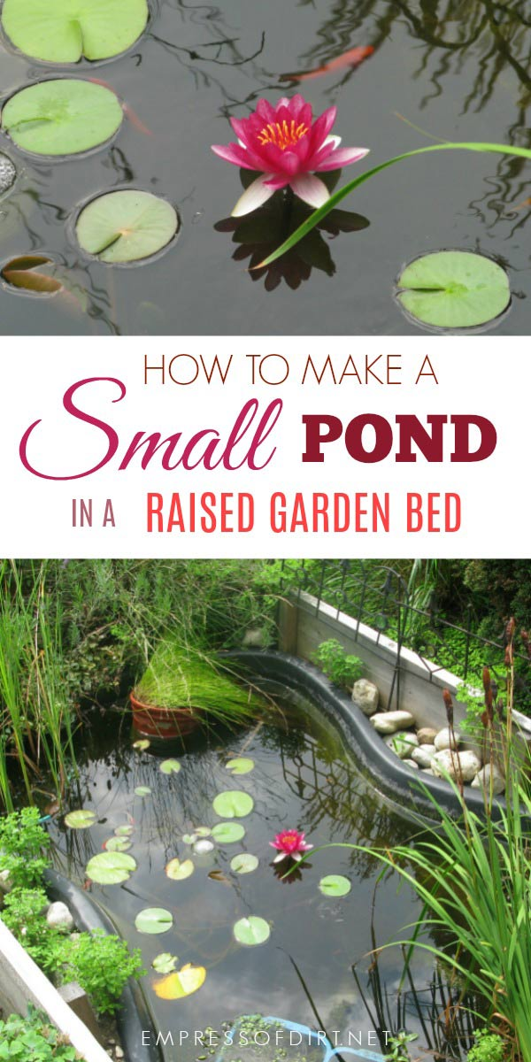 Building a small garden pond in a raised garden bed is a good solution when you need better accessibility or cannot dig into the ground.