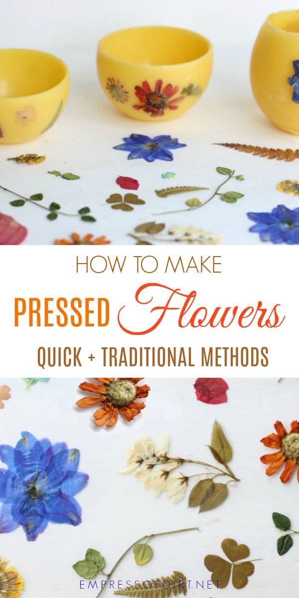 How to make pressed flowers quick traditional methods empress how to press real flowers leaves and other botanicals using quick and traditional methods mightylinksfo
