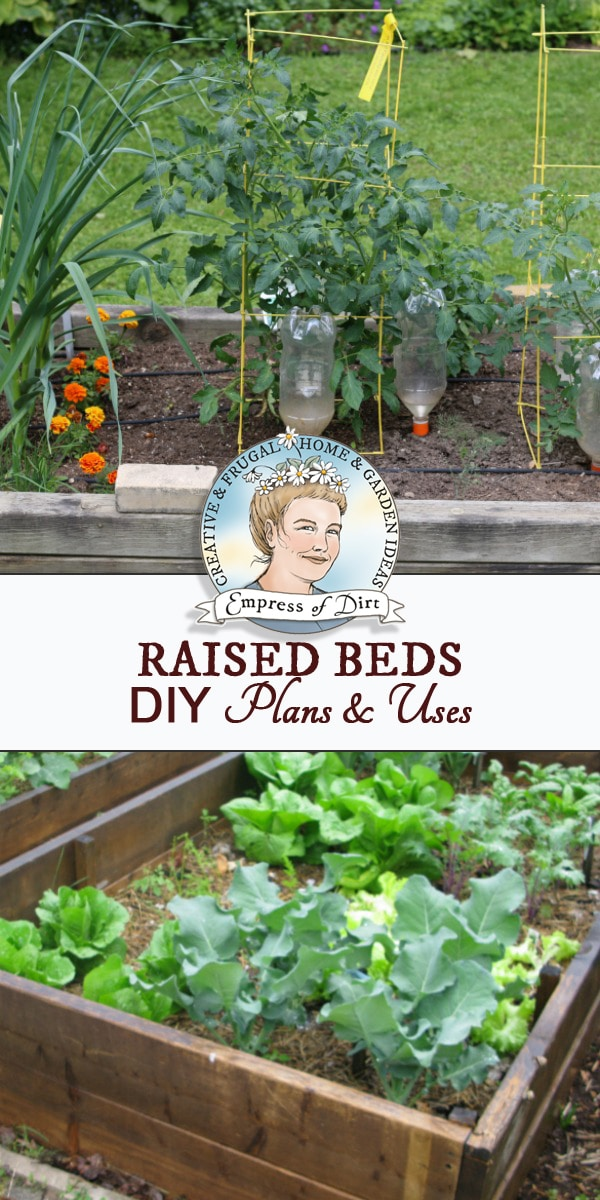 Raised garden beds solve so many garden problems! Be sure to choose safe, long-lasting wood for a garden box that will last for years. These tips include free plans, and creative uses for raised beds.