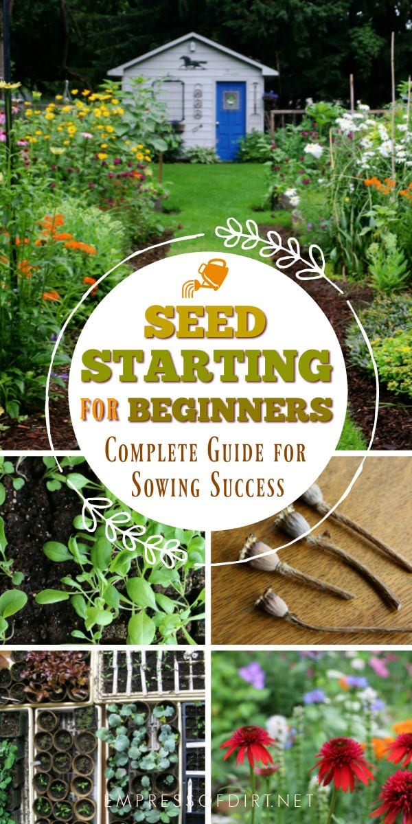 Seed starting for beginners: sow indoors grow outdoors. Everything you need to grow.