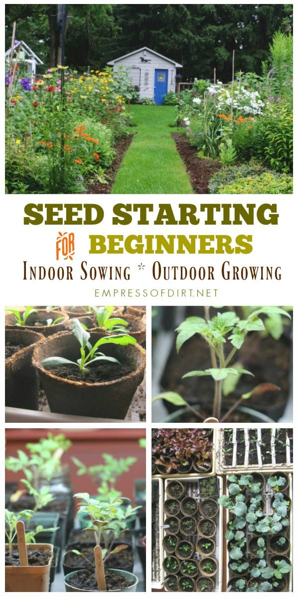 Seed Starting for Beginners: Indoor Sowing Outside Growing with Empress of Dirt