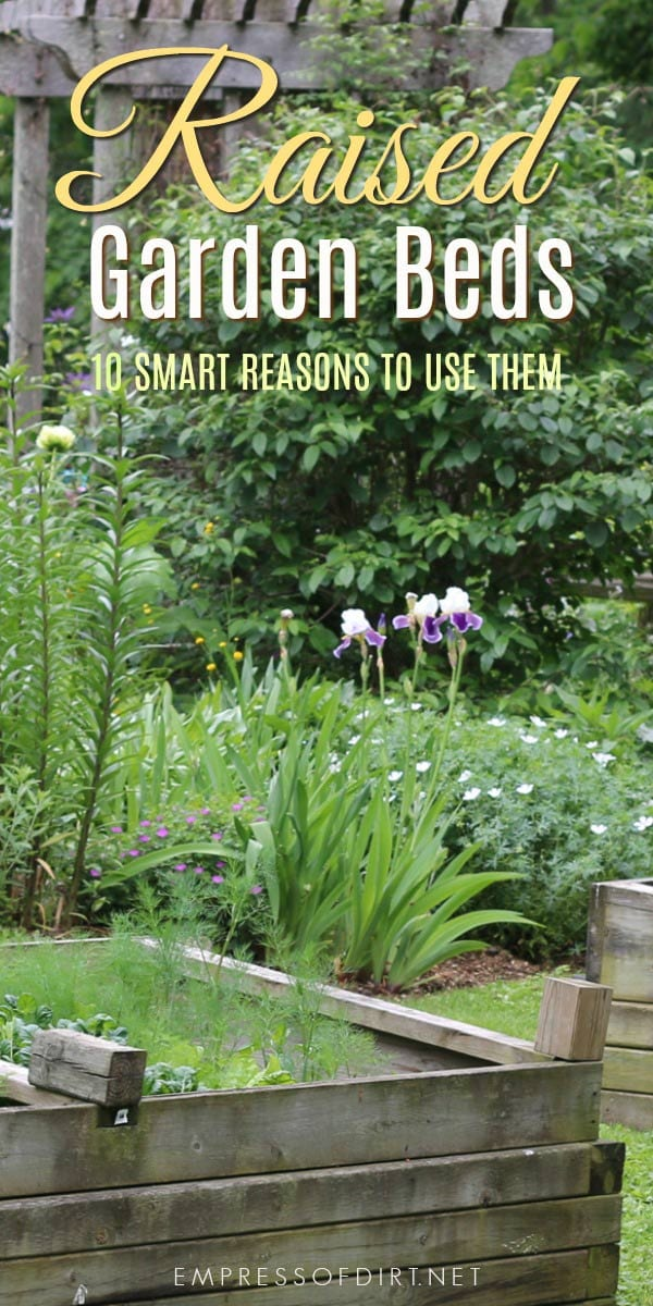 10 Smart Reasons to Use Raised Beds in Your Garden: save money and grow more!