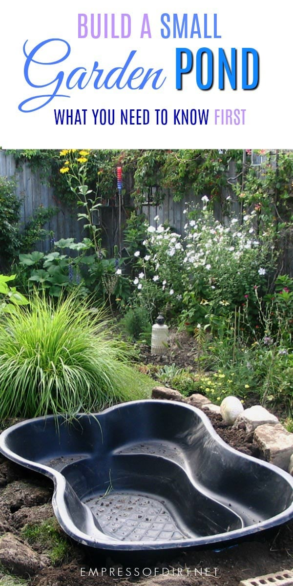 Advice For Starting a New Garden Pond - Empress of Dirt