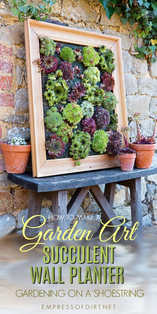 Turn Succulents Into Living Wall Art With This Picture Frame Projects.  Sempervivums, Also Known