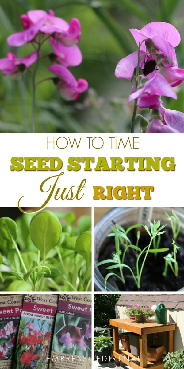 How to time your seed starting just right.