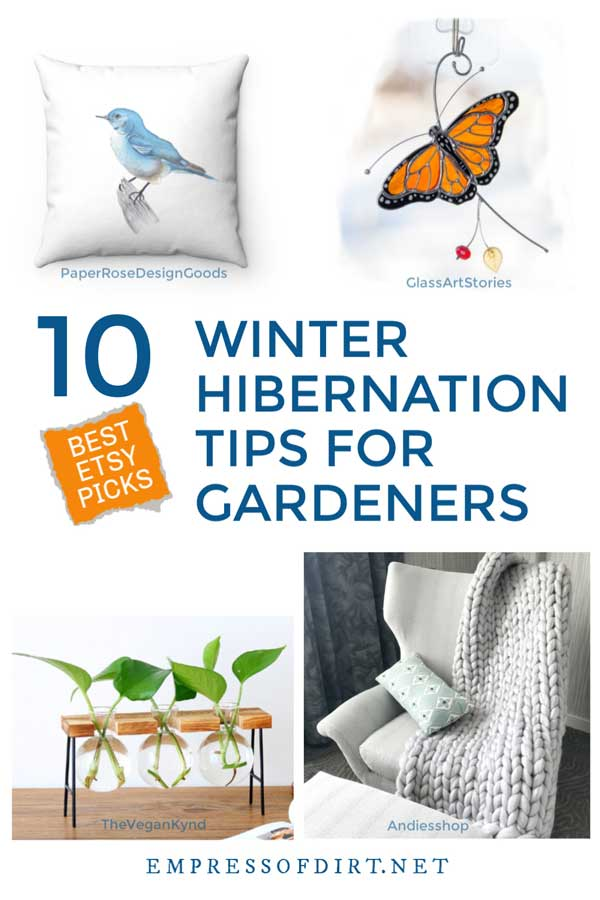 10 Winter Hibernation Tips for Gardeners