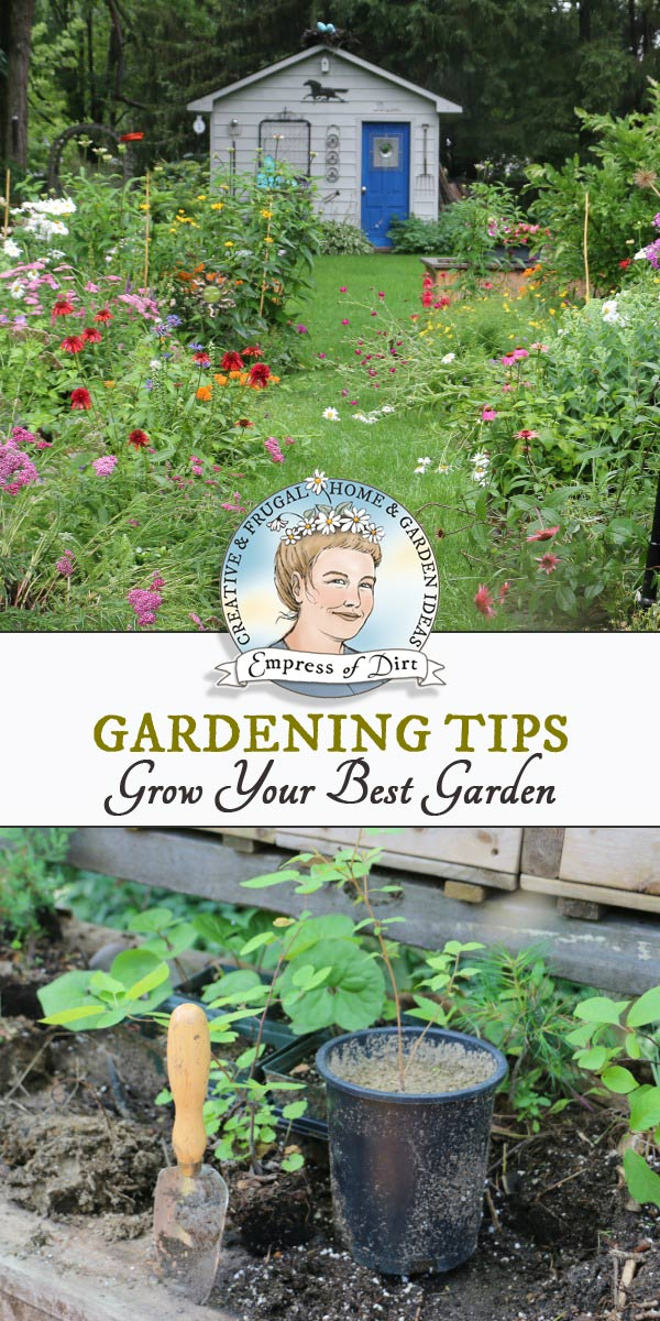 Garden tips and ideas for growing annual and perennial fruits, veggies, herbs, flowers, shrubs, and trees in a healthy, organic home garden.