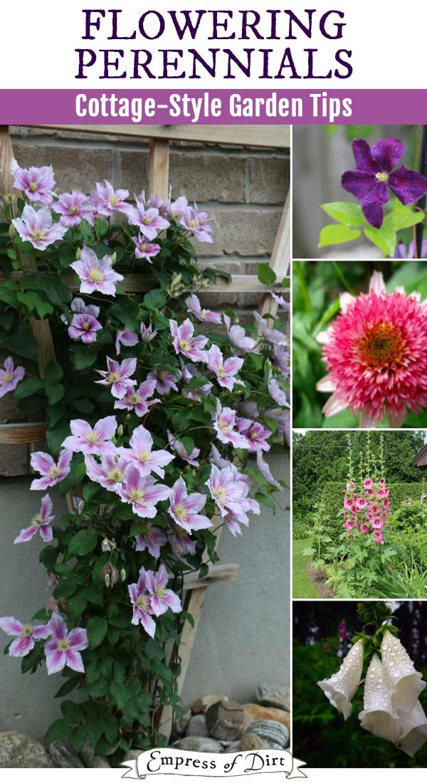 Best Flowering Plants For A Cottage Style Garden