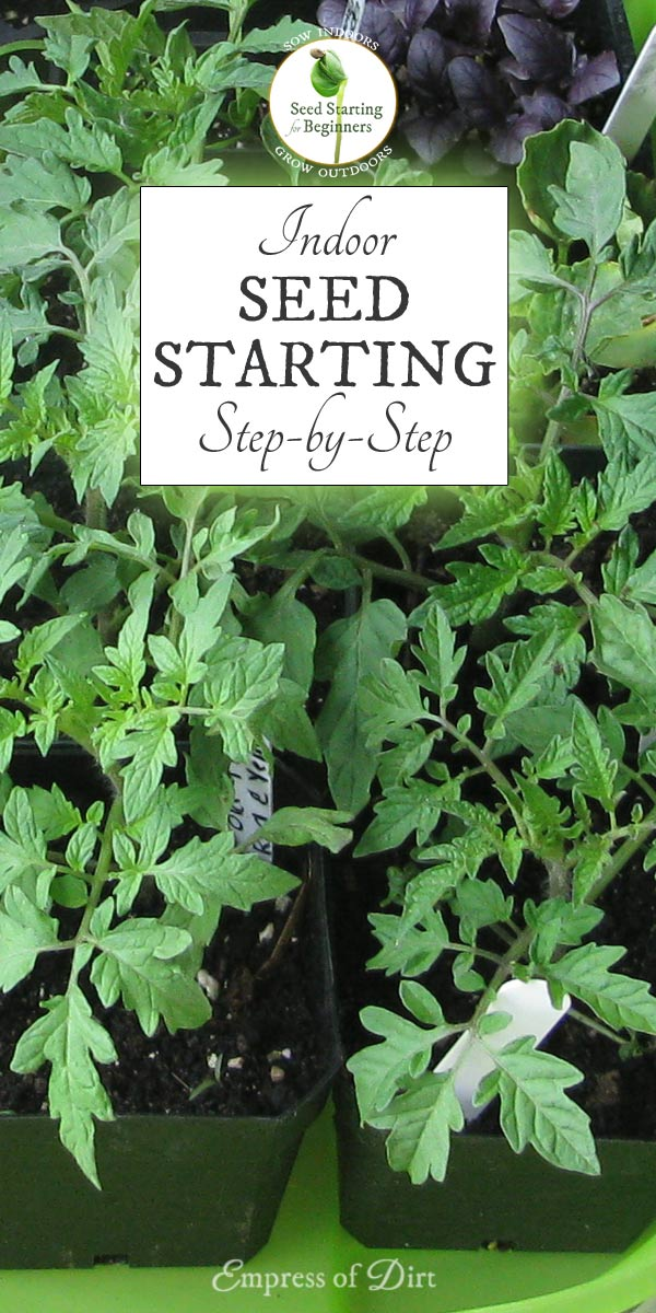How to Sow Seeds Indoors Step-by-Step   Free Printable