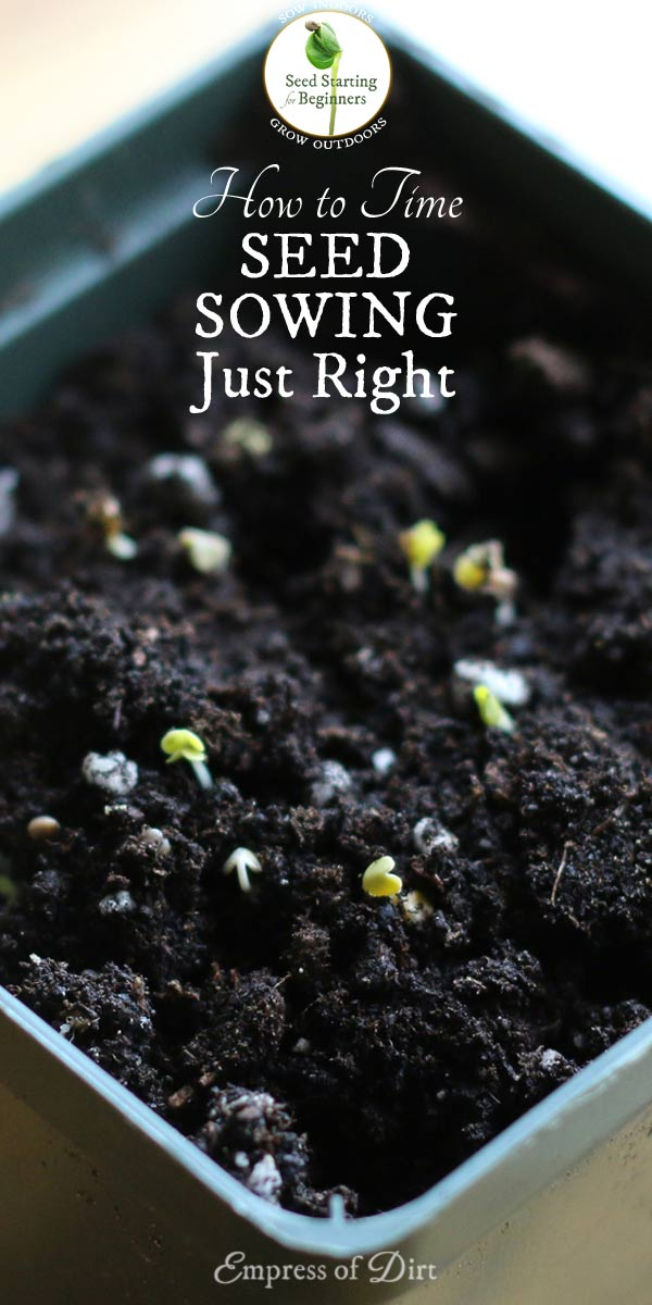How to Time Your Indoor Seed Sowing Just Right