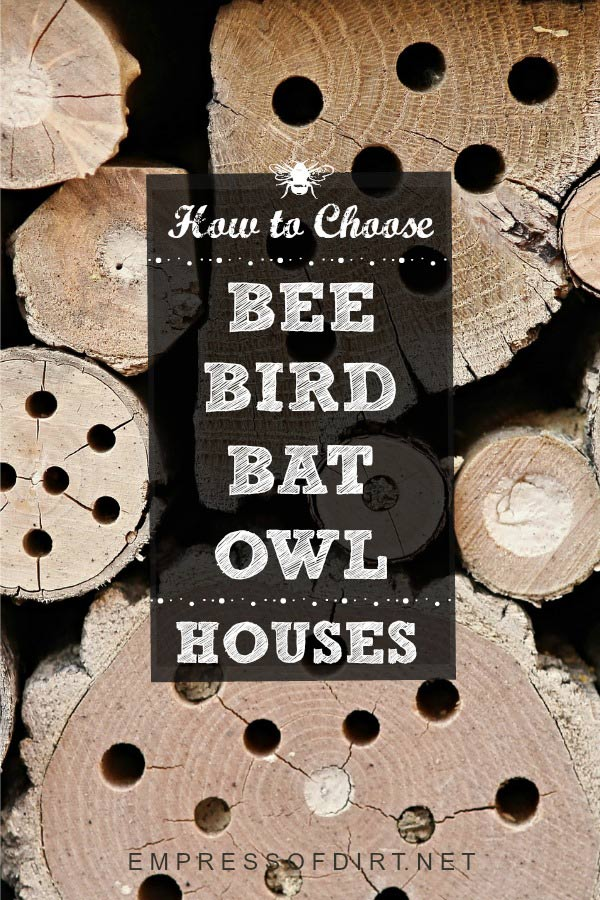 How to choose safe nesting boxes for bees, birds, bats, and owls.