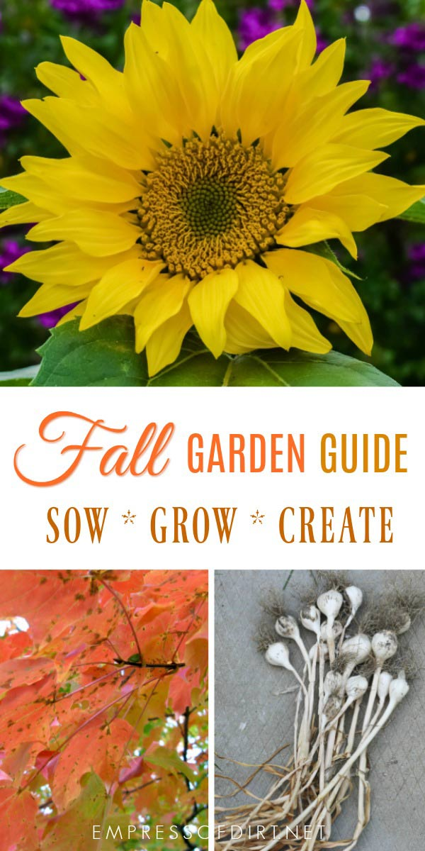 Fall is arguably the most beautiful and enjoyable times of year to work in the garden. Plus, you get apple pie! This is a resource hub for fall gardening tasks, maintenance, sowing and planting, harvesting, canning and preserving, and, of course, creating crafts, decor, and gifts from the bounty.